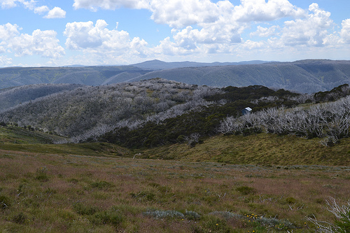 Spargo Hut, Mount Hotham. Flickr/Tony Marsh